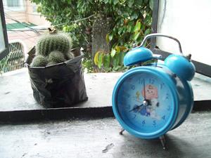cactus_clock.jpg