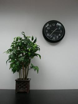 plant_clock.jpg